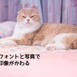 word,ダサい,フォント,猫でもできる,