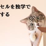 猫でもできる,エクセル,